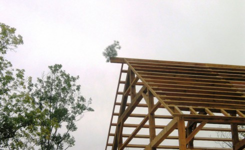 Timber Framed Gable with a Tree on Top