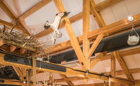 Timber Trusses with Steel in the Coastal Conservation Center Great Bay Discovery in NH