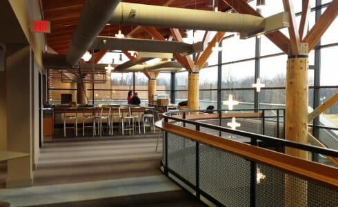 Timber Poles with Steel Joinery in Ski Lodge Interior