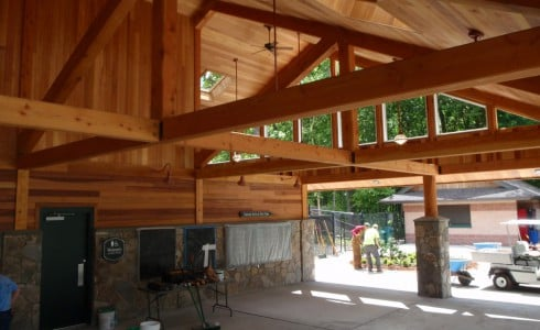 Park Interior with Timber Beams