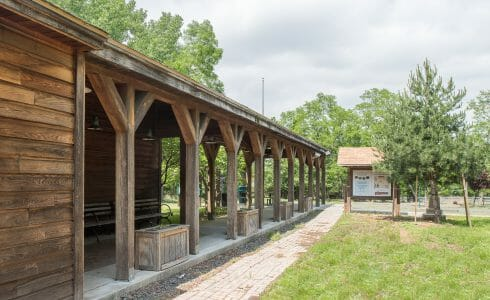 Weathered Timber Walkway at Clay Pit Ponds Visitor Center in Staten Island, NJ