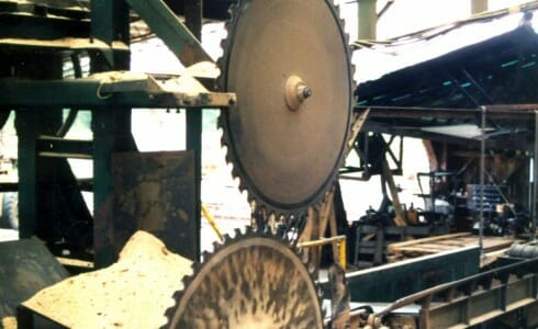 The Saws at the Mill