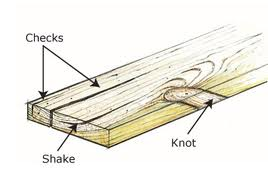 knots-shake-checking