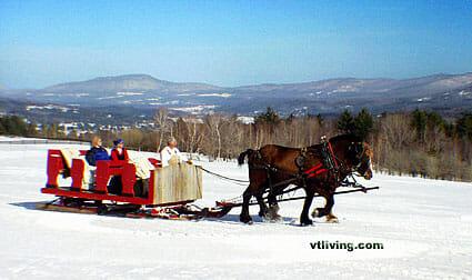 photo www.vtliving.com