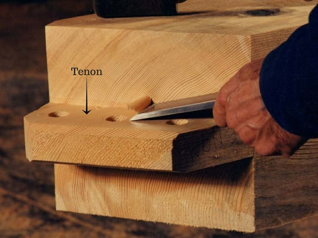 Labled Tenon