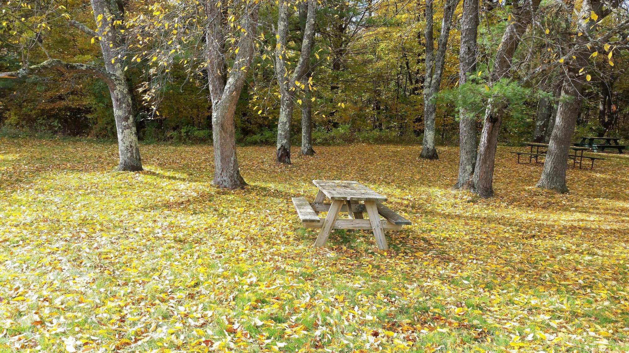 vermont-foliage-10-17-15