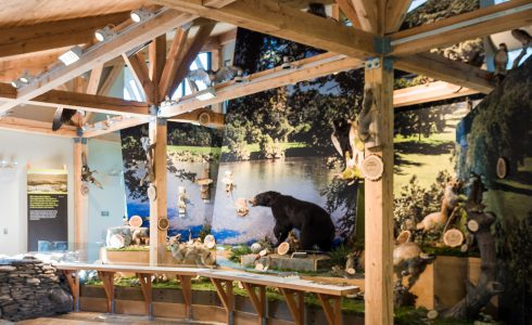 Interior of the Shenandoah State Park Visitors Center