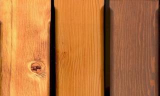Wood Species Examples